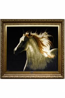صورت اسب