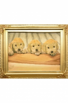 سه سگ  احمدی