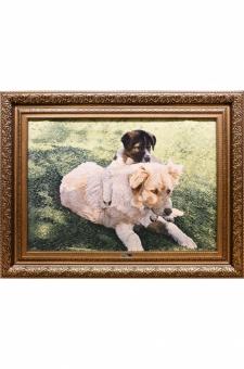 سگ و توله