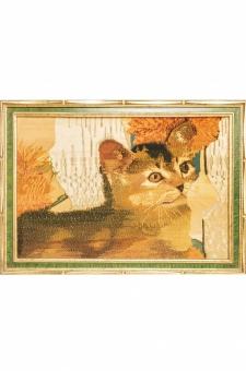 گربه  احمدی