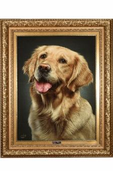 چهره سگ  احمدی