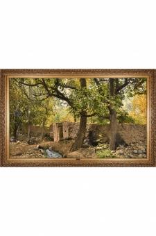 باغ گردو  احمدی